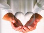 Sobre tudo o que se deve guardar, guarde o seu coração...